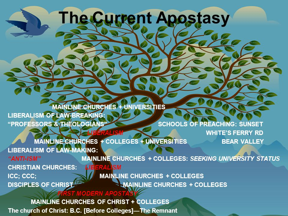The Current Apostasy MAINLINE CHURCHES + UNIVERSITIES LIBERALISM OF LAW-BREAKING: PROFESSORS & THEOLOGIANS SCHOOLS OF PREACHING: SUNSET LIBERALISM WHITE'S FERRY RD MAINLINE CHURCHES + COLLEGES + UNIVERSITIES BEAR VALLEY LIBERALISM OF LAW-MAKING: ANTI-ISM MAINLINE CHURCHES + COLLEGES: SEEKING UNIVERSITY STATUS CHRISTIAN CHURCHES: LIBERALISM ICC; CCC; MAINLINE CHURCHES + COLLEGES DISCIPLES OF CHRIST MAINLINE CHURCHES + COLLEGES FIRST MODERN APOSTASY MAINLINE CHURCHES OF CHRIST + COLLEGES The church of Christ: B.C.