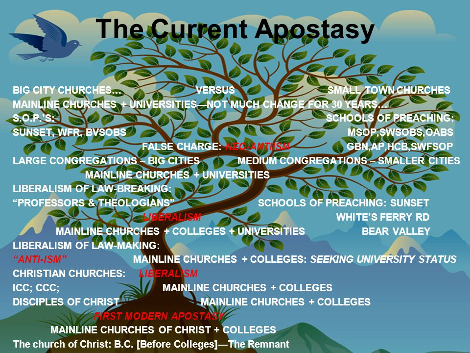 The Current Apostasy BIG CITY CHURCHES… VERSUS SMALL TOWN CHURCHES MAINLINE CHURCHES + UNIVERSITIES—NOT MUCH CHANGE FOR 30 YEARS… S.O.P.'S: SCHOOLS OF