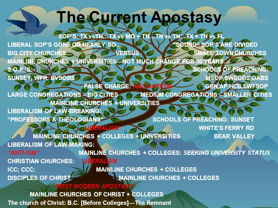 The Current Apostasy SOP'S: TX vsTN…TX vs MO + TN…TN vs TN…TX + TN vs FL LIBERAL SOP'S GONE OR NEARLY SO… SOUND SOP'S ARE DIVIDED BIG CITY CHURCHES… VERSUS SMALL TOWN CHURCHES MAINLINE CHURCHES + UNIVERSITIES—NOT MUCH CHANGE FOR 30 YEARS… S.O.P.'S: SCHOOLS OF PREACHING: SUNSET, WFR, BVSOBS MSOP,SWSOBS,OABS FALSE CHARGE: NEO-ANTIISM GBN,AP,HCB,SWFSOP LARGE CONGREGATIONS – BIG CITIES MEDIUM CONGREGATIONS – SMALLER CITIES MAINLINE CHURCHES + UNIVERSITIES LIBERALISM OF LAW-BREAKING: PROFESSORS & THEOLOGIANS SCHOOLS OF PREACHING: SUNSET LIBERALISM WHITE'S FERRY RD MAINLINE CHURCHES + COLLEGES + UNIVERSITIES BEAR VALLEY LIBERALISM OF LAW-MAKING: ANTI-ISM MAINLINE CHURCHES + COLLEGES: SEEKING UNIVERSITY STATUS CHRISTIAN CHURCHES: LIBERALISM ICC; CCC; MAINLINE CHURCHES + COLLEGES DISCIPLES OF CHRIST MAINLINE CHURCHES + COLLEGES FIRST MODERN APOSTASY MAINLINE CHURCHES OF CHRIST + COLLEGES The church of Christ: B.C.