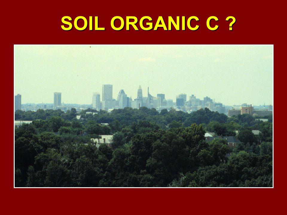 SOIL ORGANIC C