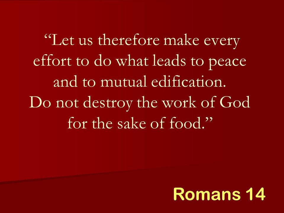 Let us therefore make every effort to do what leads to peace and to mutual edification.