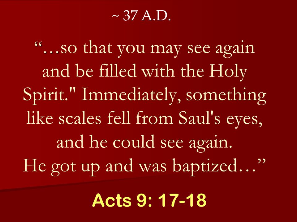 … … so that you may see again and be filled with the Holy Spirit. Immediately, something like scales fell from Saul s eyes, and he could see again.