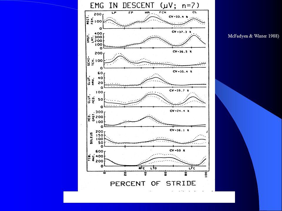 Figure 4: EMG During Descent (McFadyen & Winter, 1988) McFadyen & Winter 1988)
