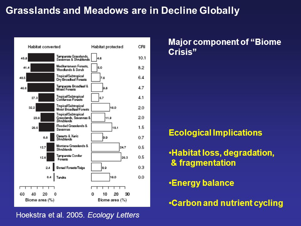 Grasslands and Meadows are in Decline Globally Major component of Biome Crisis Hoekstra et al.