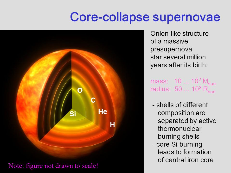 1 Si O C He H Onion-like structure of a massive presupernova star several million years after its birth: mass: 10... 10 2 M sun radius: 50... 10 3 R s