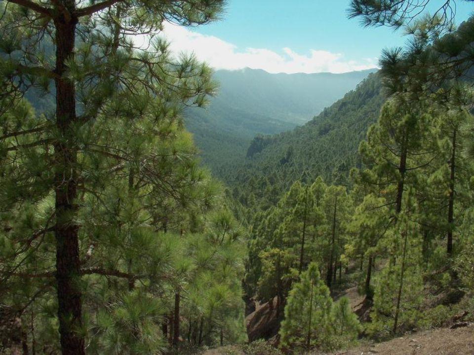 One of the Canary Islands Isle of La Palma
