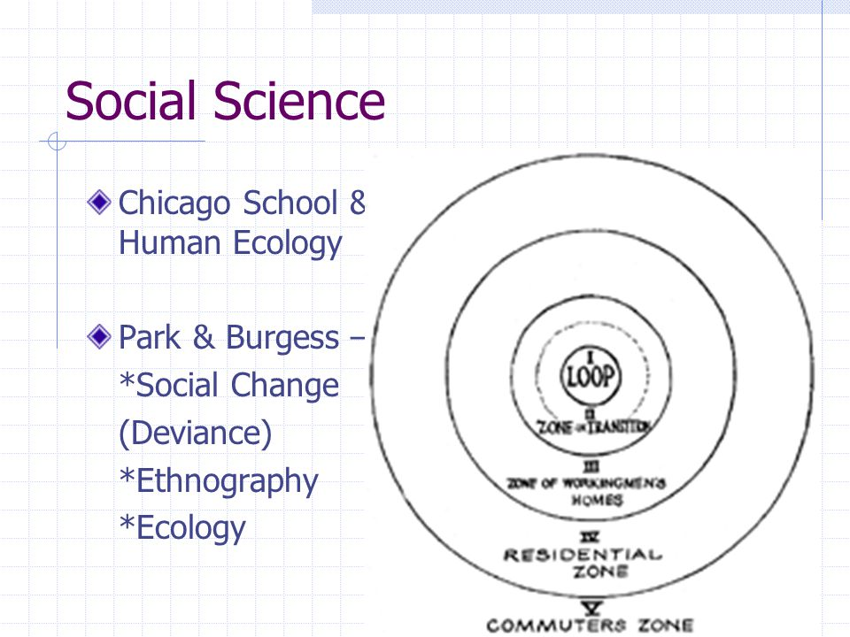 Social Science Chicago School & Human Ecology Park & Burgess – *Social Change (Deviance) *Ethnography *Ecology