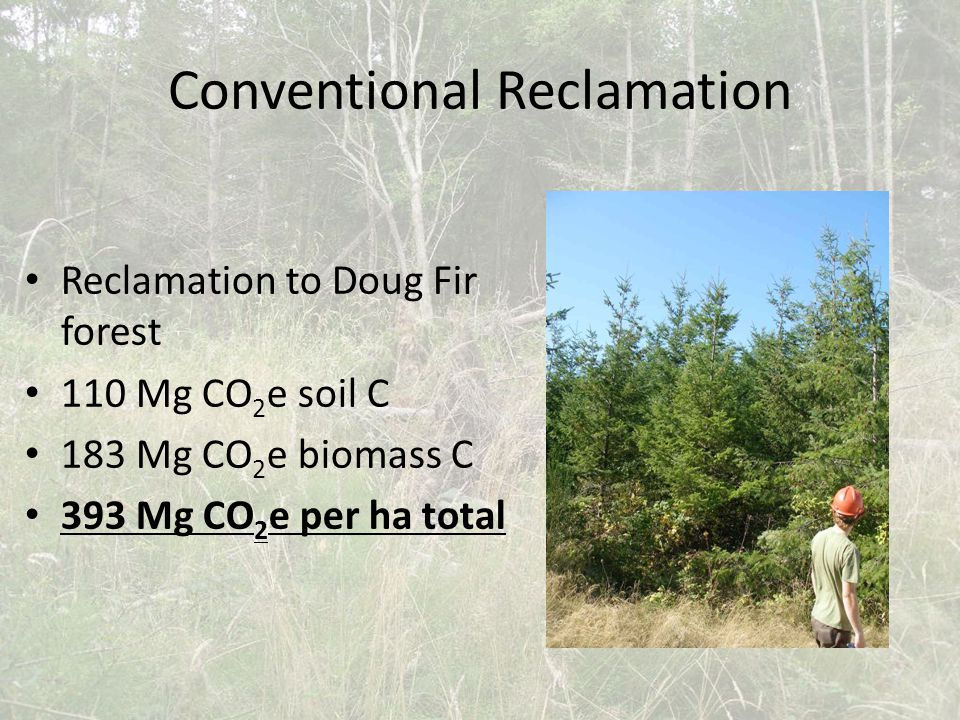 Conventional Reclamation Reclamation to Doug Fir forest 110 Mg CO 2 e soil C 183 Mg CO 2 e biomass C 393 Mg CO 2 e per ha total