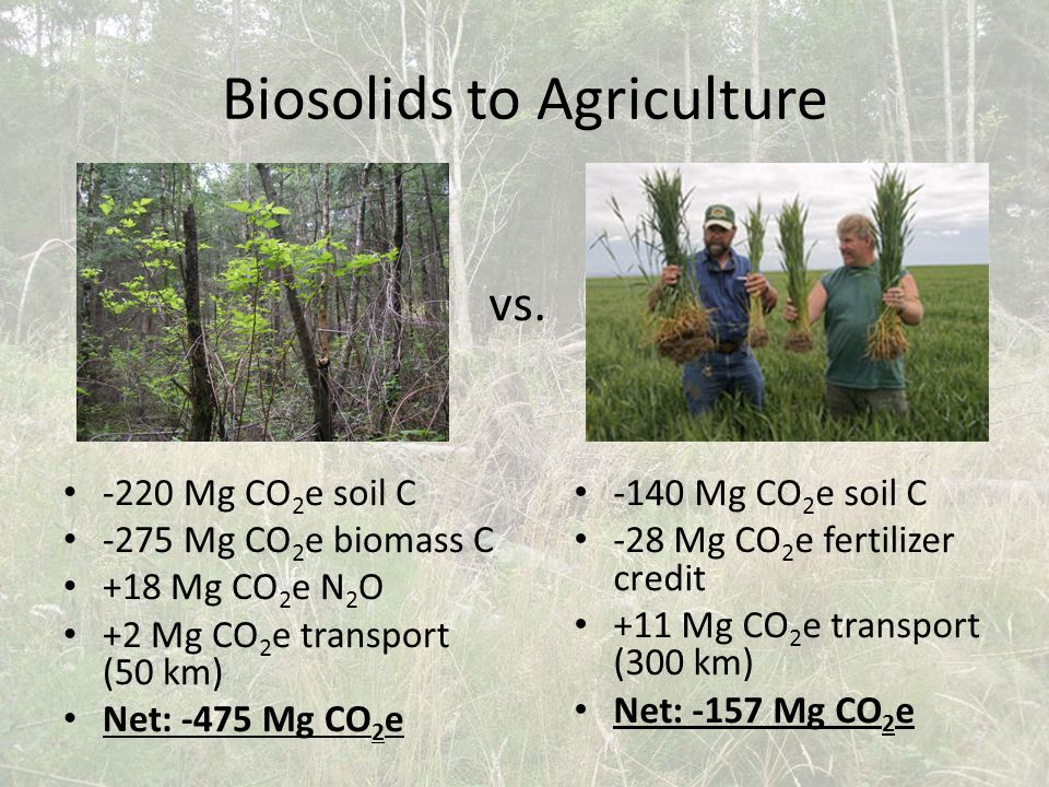 Biosolids to Agriculture -220 Mg CO 2 e soil C -275 Mg CO 2 e biomass C +18 Mg CO 2 e N 2 O +2 Mg CO 2 e transport (50 km) Net: -475 Mg CO 2 e -140 Mg CO 2 e soil C -28 Mg CO 2 e fertilizer credit +11 Mg CO 2 e transport (300 km) Net: -157 Mg CO 2 e vs.