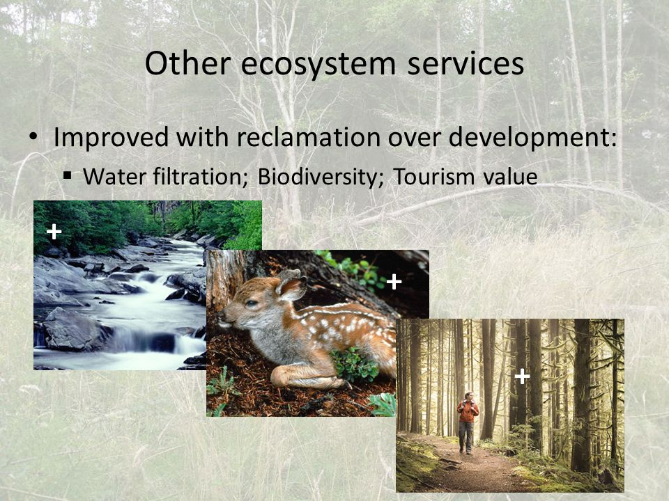 Other ecosystem services Improved with reclamation over development:  Water filtration; Biodiversity; Tourism value + + +