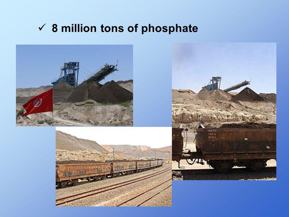 8 million tons of phosphate