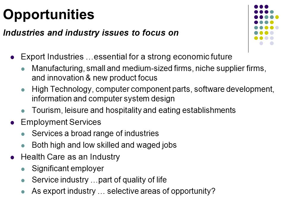 Opportunities Industries and industry issues to focus on Export Industries …essential for a strong economic future Manufacturing, small and medium-sized firms, niche supplier firms, and innovation & new product focus High Technology, computer component parts, software development, information and computer system design Tourism, leisure and hospitality and eating establishments Employment Services Services a broad range of industries Both high and low skilled and waged jobs Health Care as an Industry Significant employer Service industry …part of quality of life As export industry … selective areas of opportunity