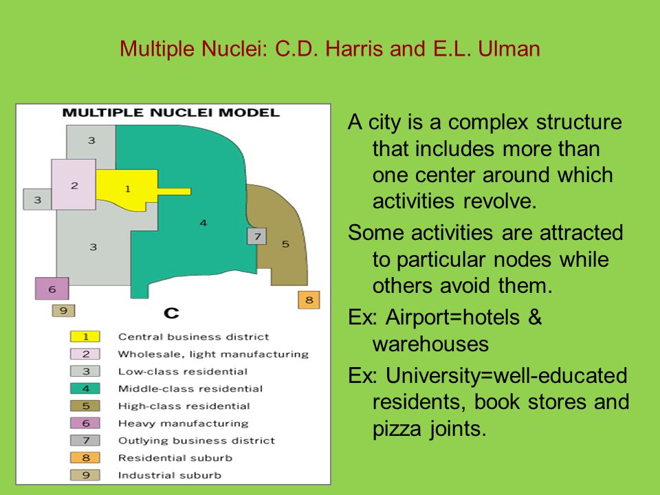 Multiple Nuclei: C.D. Harris and E.L. Ulman A city is a complex structure that includes more than one center around which activities revolve. Some act