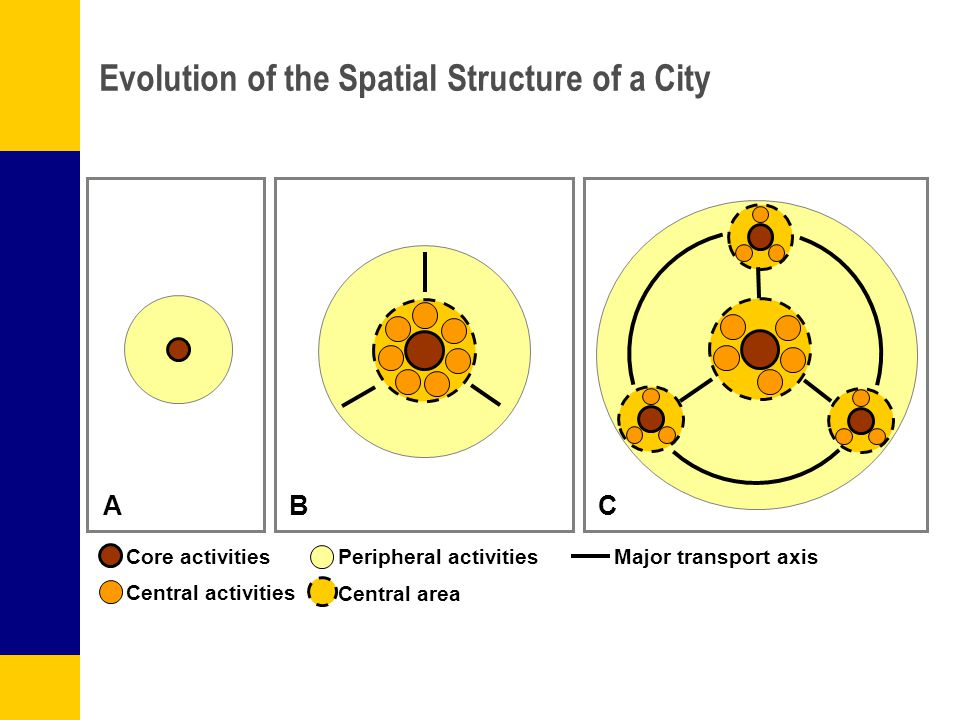 A BC Core activities Central activities Peripheral activities Evolution of the Spatial Structure of a City Central area Major transport axis