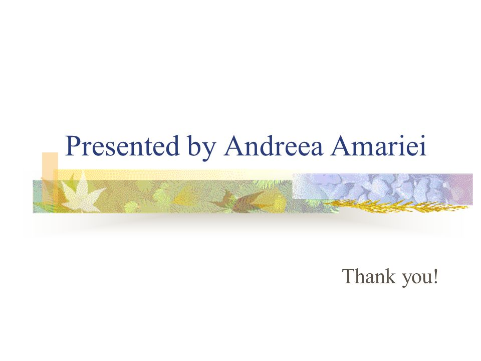 Presented by Andreea Amariei Thank you!
