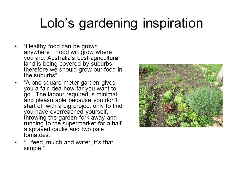 """Lolo's gardening inspiration """"Healthy food can be grown anywhere. Food will grow where you are. Australia's best agricultural land is being covered by"""