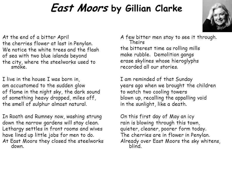 East Moors by Gillian Clarke At the end of a bitter April the cherries flower at last in Penylan.
