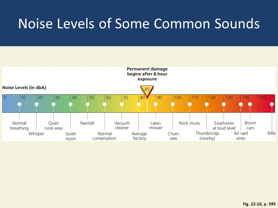 Noise Levels of Some Common Sounds Fig. 22-10, p. 595