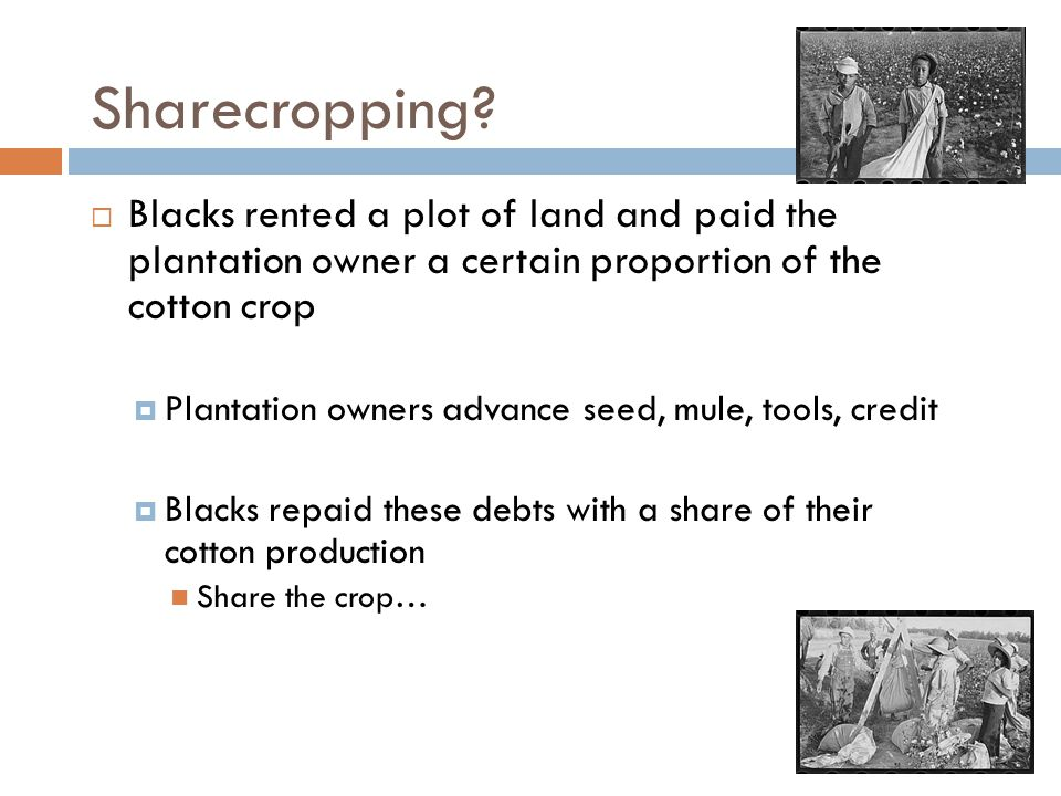 Sharecropping.