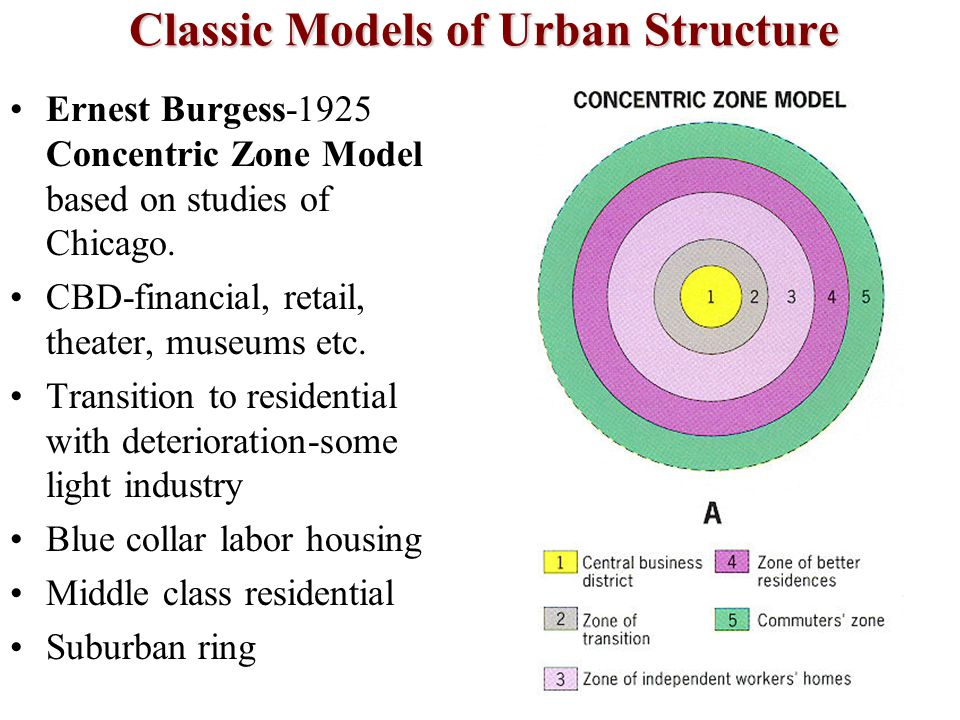 Classic Models of Urban Structure Ernest Burgess-1925 Concentric Zone Model based on studies of Chicago. CBD-financial, retail, theater, museums etc.