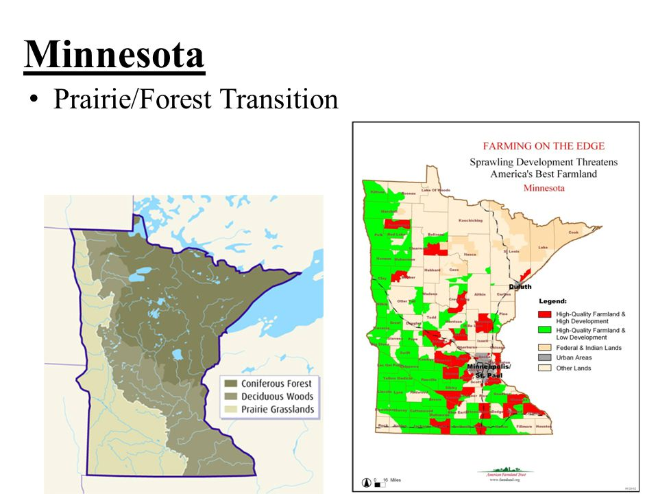 Minnesota Prairie/Forest Transition