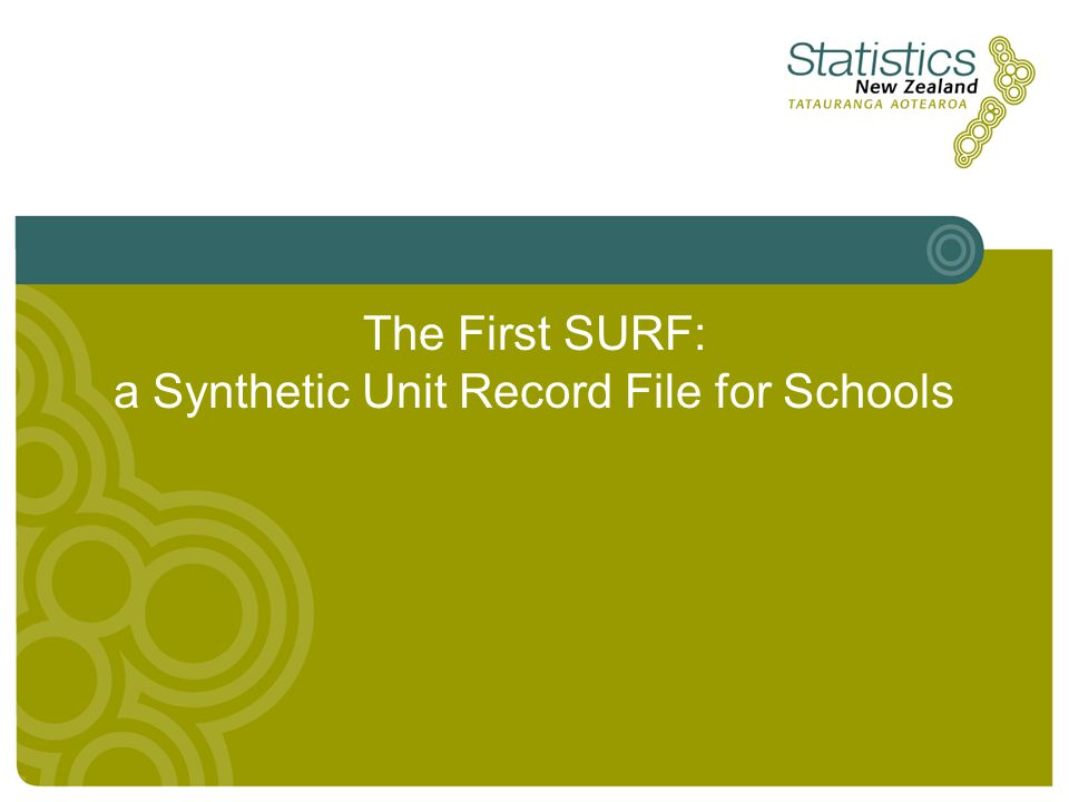 The First SURF: a Synthetic Unit Record File for Schools