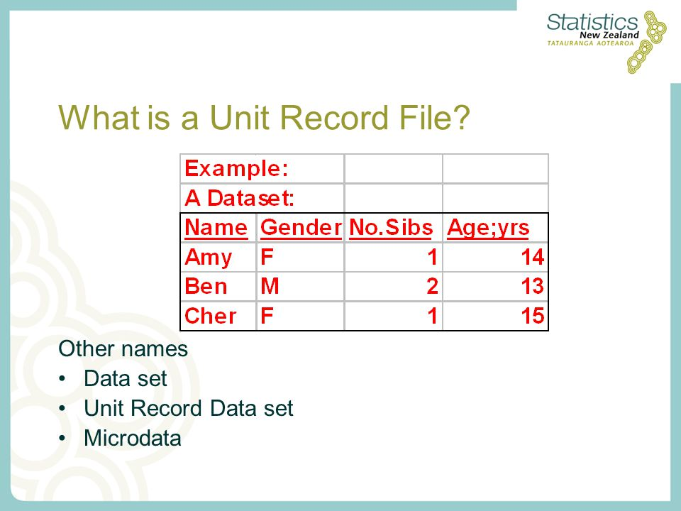 What is a Unit Record File Other names Data set Unit Record Data set Microdata
