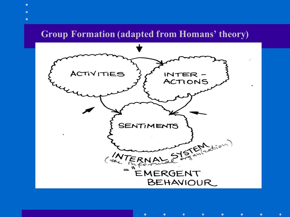 Group Formation (adapted from Homans' theory)