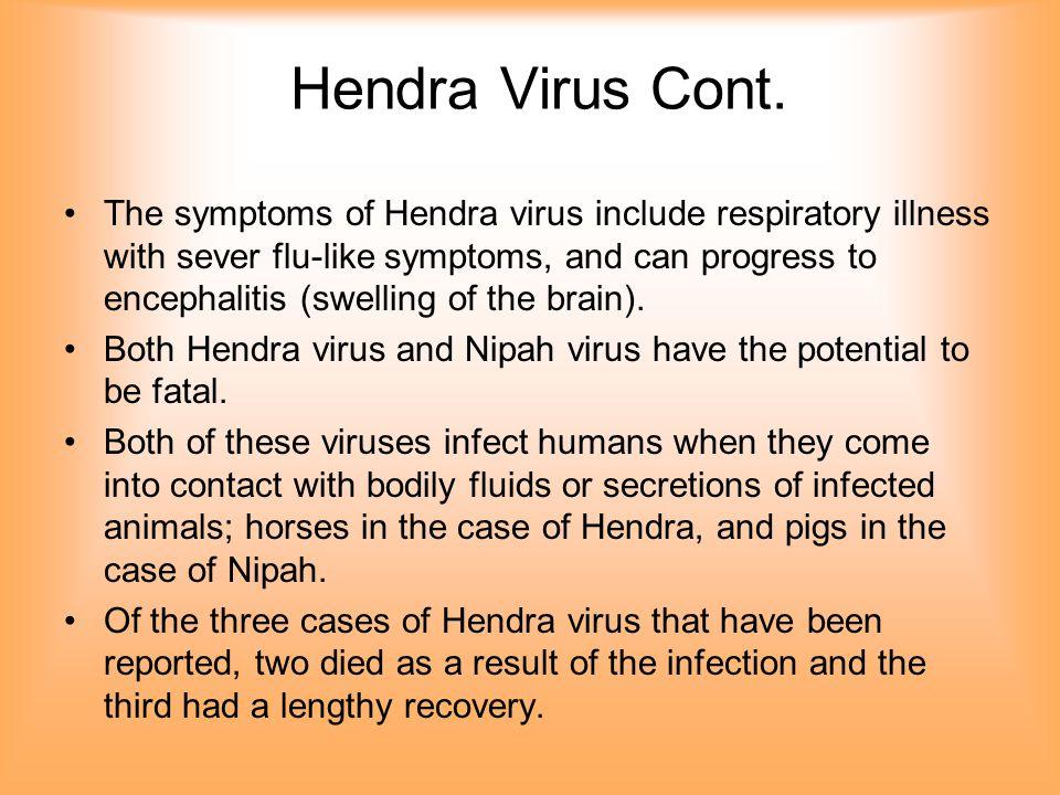Hendra Virus Cont.