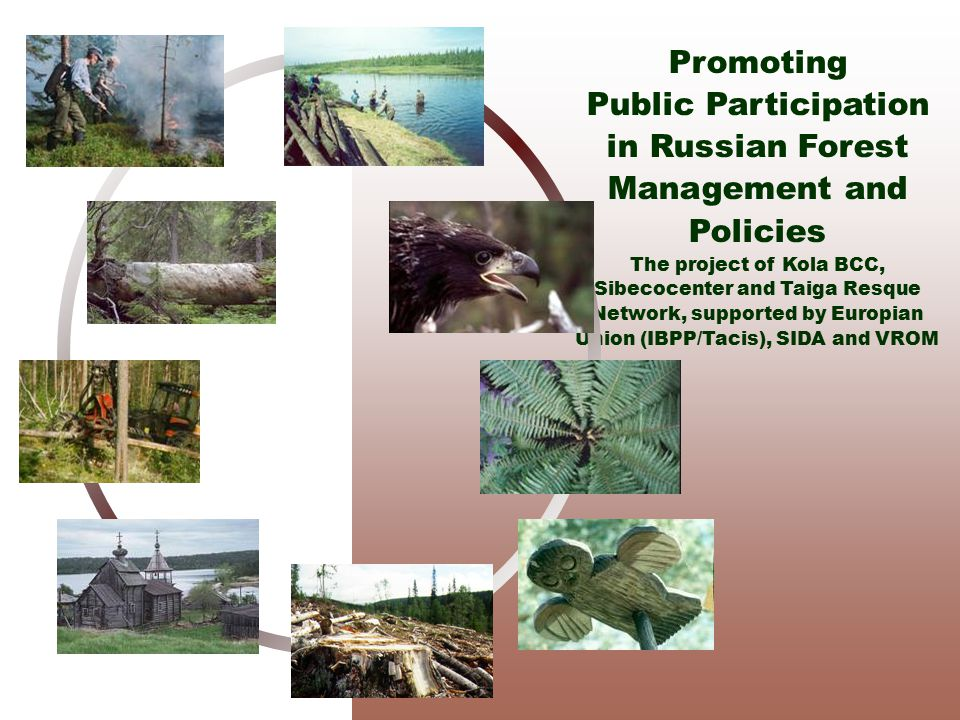 Promoting Public Participation in Russian Forest Management and Policies The project of Kola BCC, Sibecocenter and Taiga Resque Network, supported by Europian Union (IBPP/Tacis), SIDA and VROM