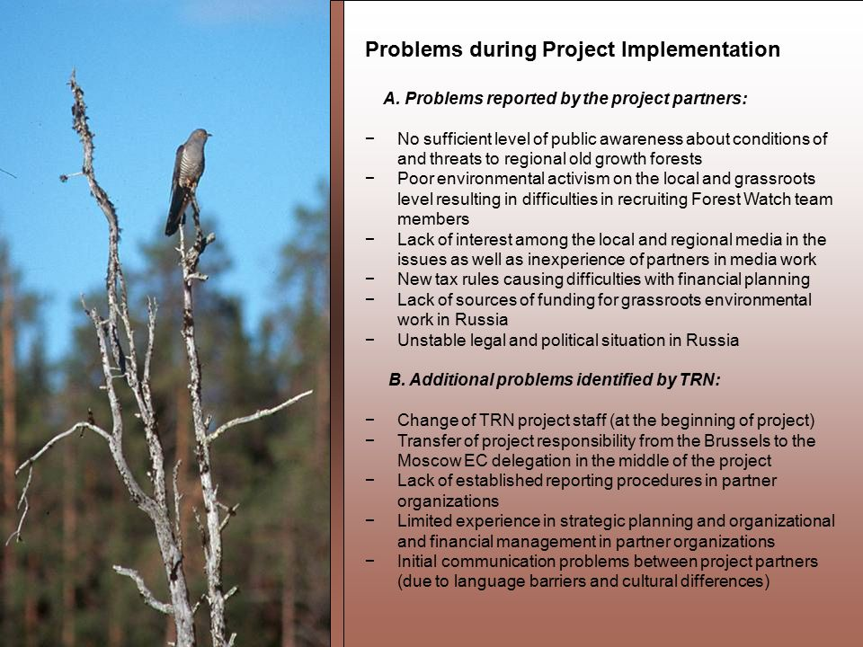 Problems during Project Implementation A.