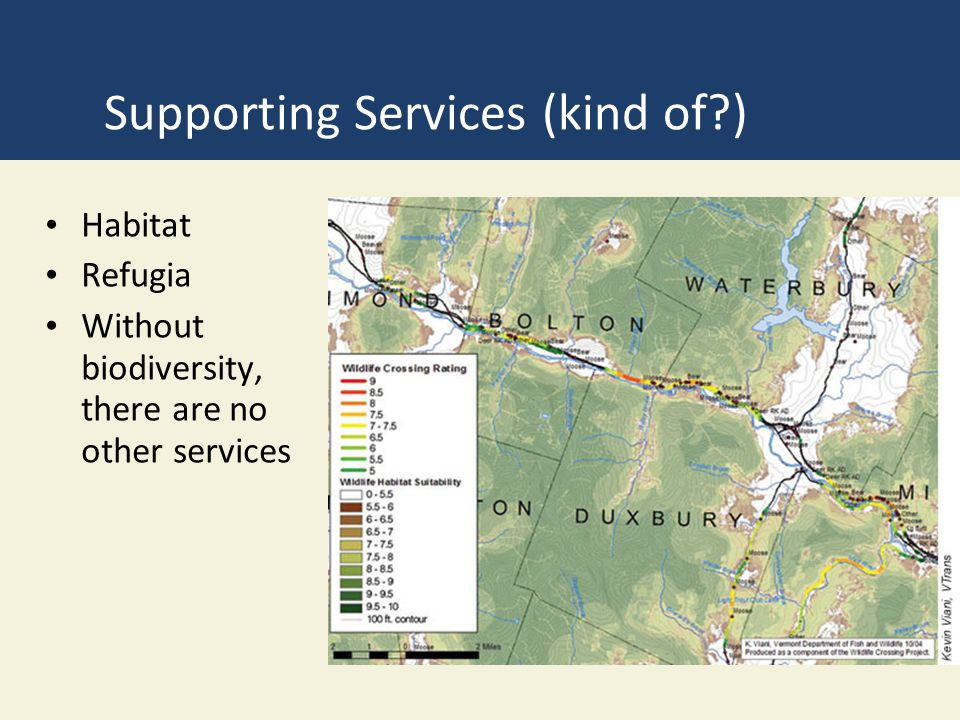 Supporting Services (kind of?) Habitat Refugia Without biodiversity, there are no other services