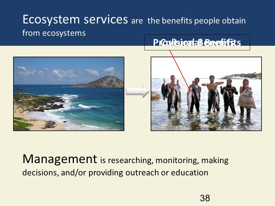 Ecosystem services are the benefits people obtain from ecosystems 38 Management is researching, monitoring, making decisions, and/or providing outreac