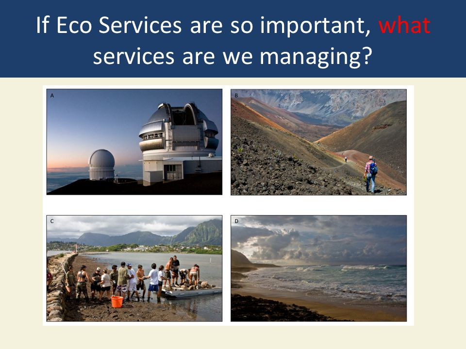 If Eco Services are so important, what services are we managing?
