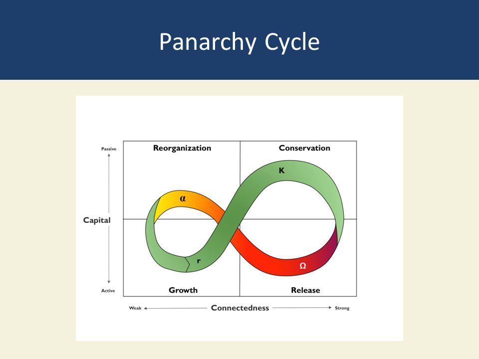 Panarchy Cycle