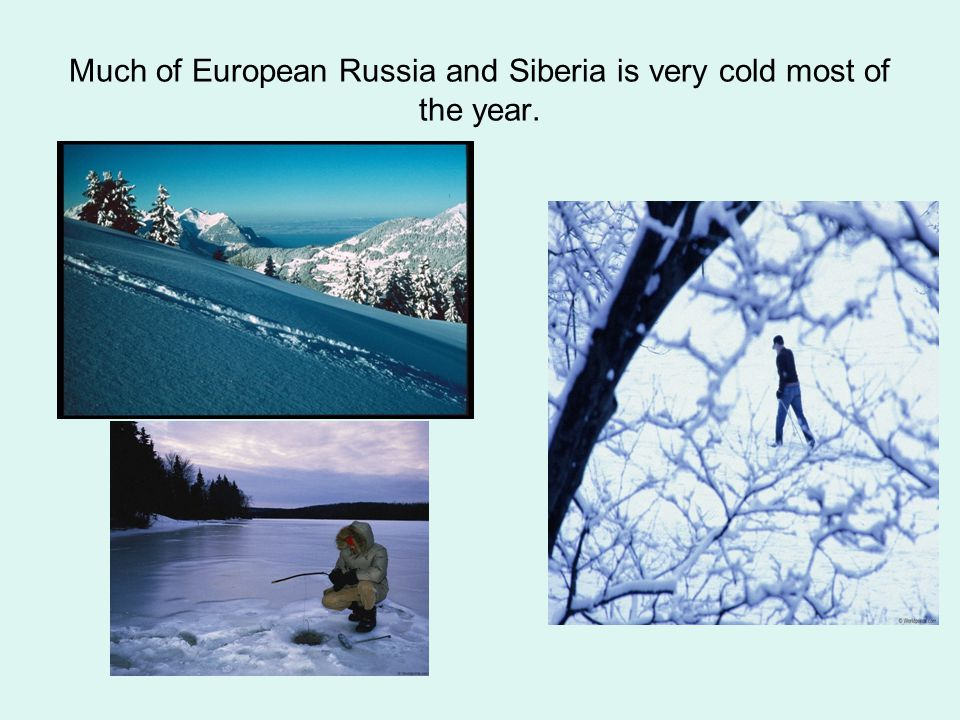 Much of European Russia and Siberia is very cold most of the year.