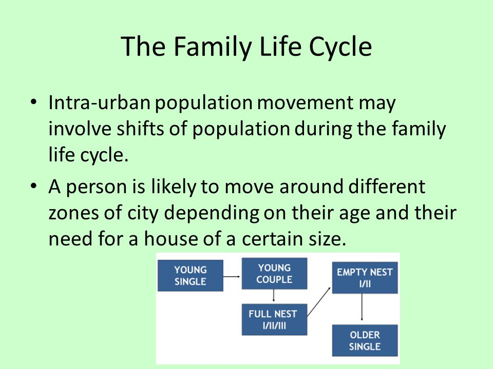 The Family Life Cycle Intra-urban population movement may involve shifts of population during the family life cycle. A person is likely to move around