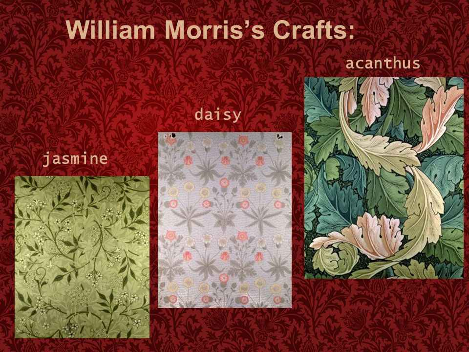 William Morris's Crafts: jasmine daisy acanthus