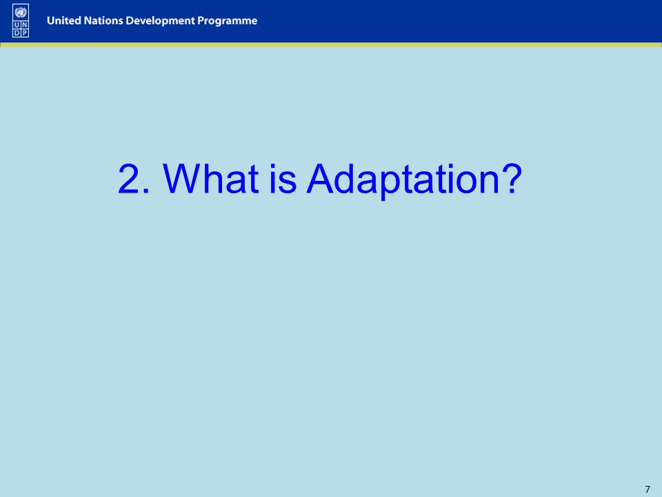 7 2. What is Adaptation?