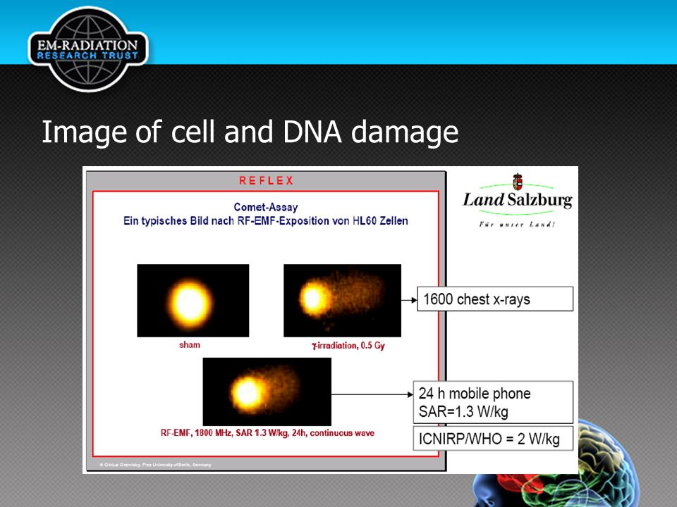 Image of cell and DNA damage