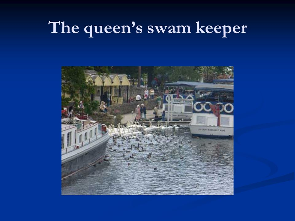 The queen's swam keeper