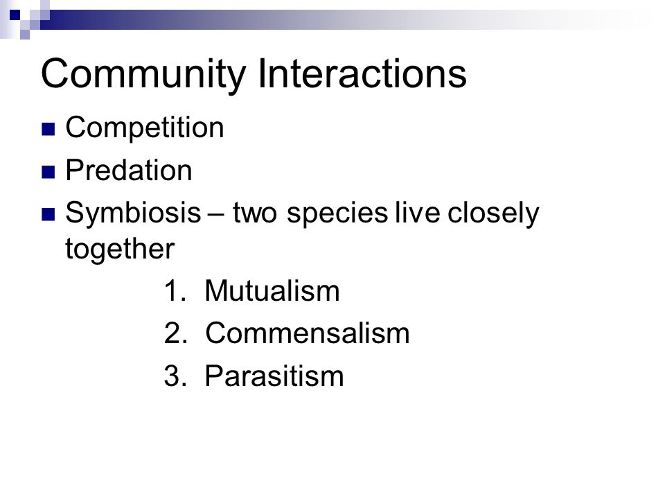 Community Interactions Competition Predation Symbiosis – two species live closely together 1.