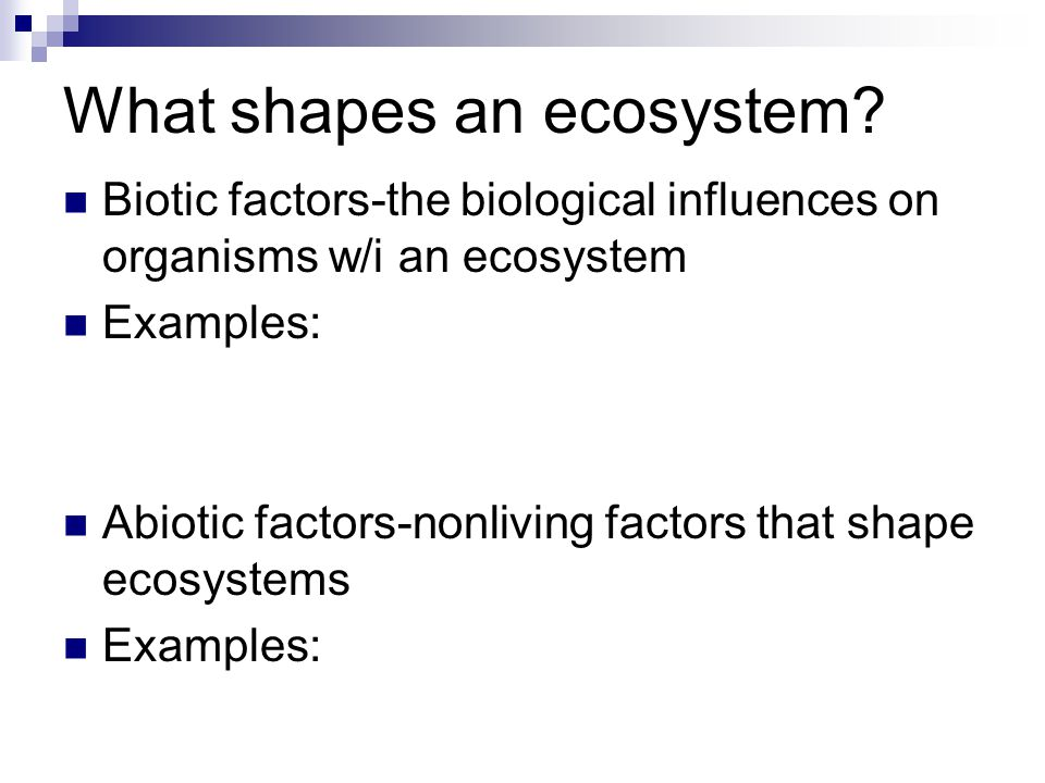 What shapes an ecosystem.