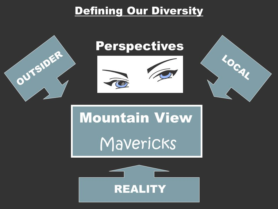Mountain View Mavericks Perspectives OUTSIDER LOCAL REALITY Defining Our Diversity