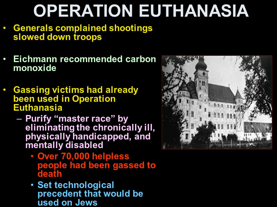 OPERATION EUTHANASIA Generals complained shootings slowed down troops Eichmann recommended carbon monoxide Gassing victims had already been used in Op
