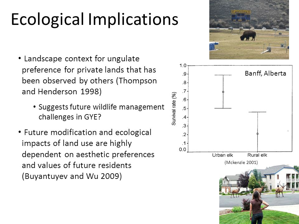 Ecological Implications (Mckenzie 2001) Banff, Alberta Landscape context for ungulate preference for private lands that has been observed by others (Thompson and Henderson 1998) Suggests future wildlife management challenges in GYE.