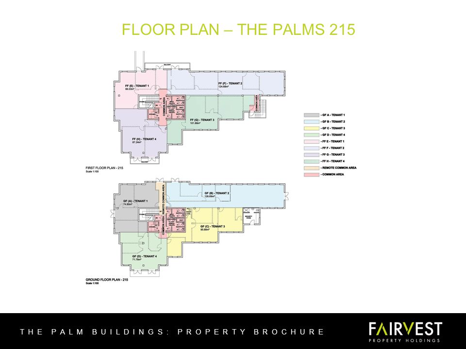 FLOOR PLAN – THE PALMS 215 THE PALM BUILDINGS: PROPERTY BROCHURE