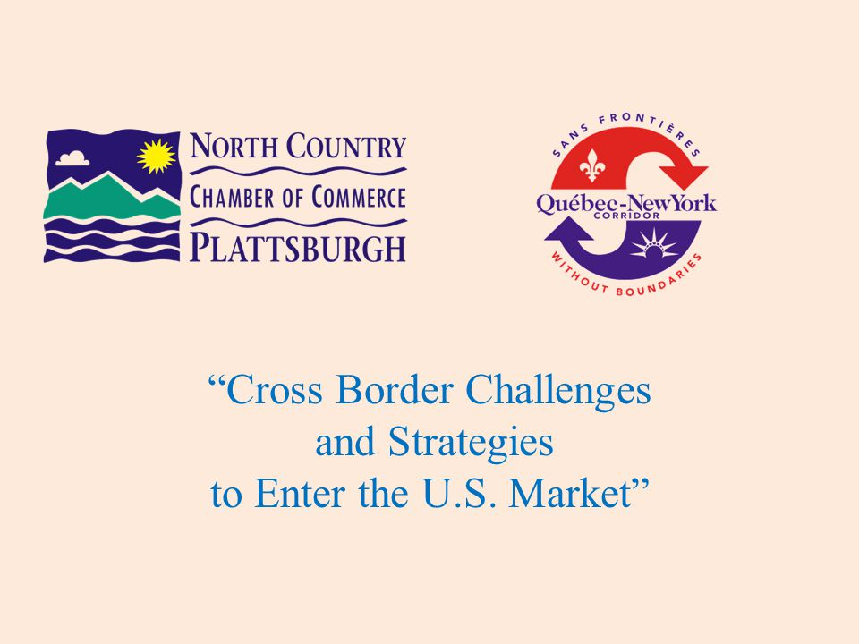 Cross Border Challenges and Strategies to Enter the U.S. Market