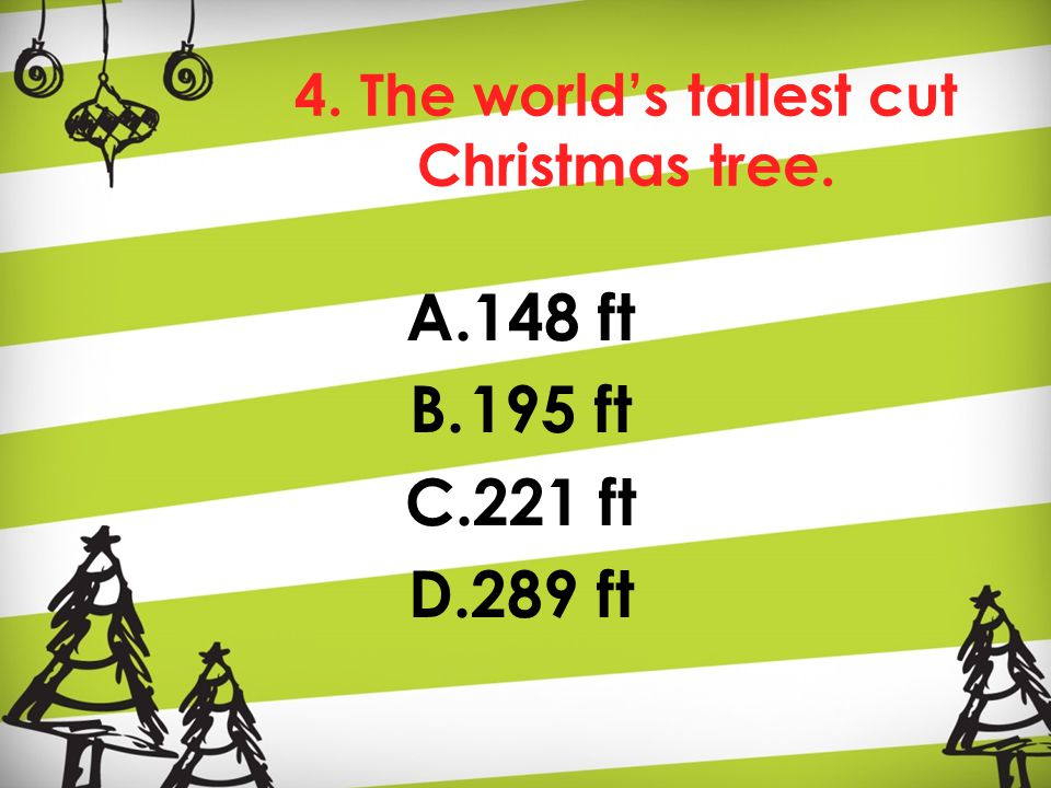 4. The world's tallest cut Christmas tree. A.148 ft B.195 ft C.221 ft D.289 ft