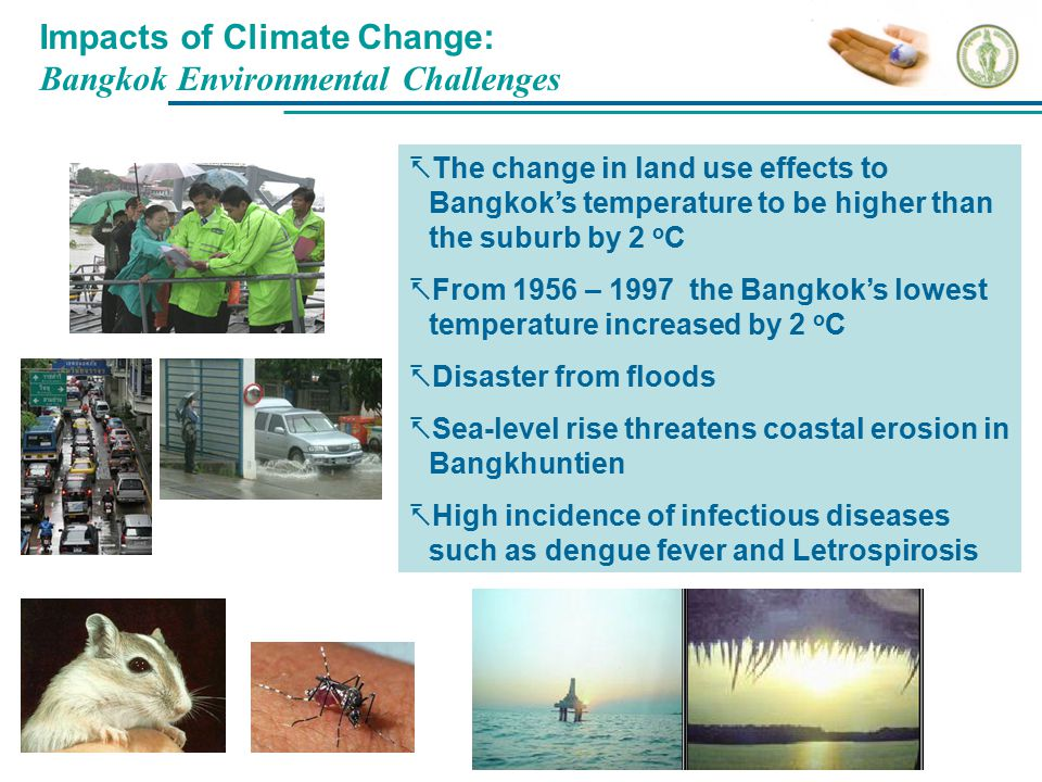 Impacts of Climate Change: Bangkok Environmental Challenges  The change in land use effects to Bangkok's temperature to be higher than the suburb by